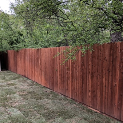 A 6 foot wooden fence in a backyard that recently had sod installed.